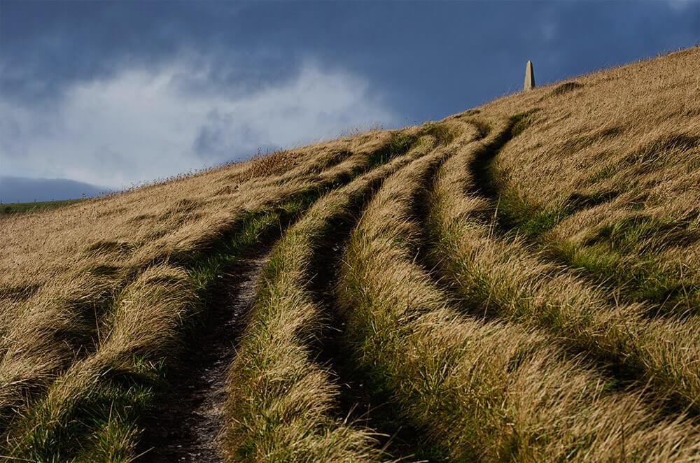 Chaldon_Hill