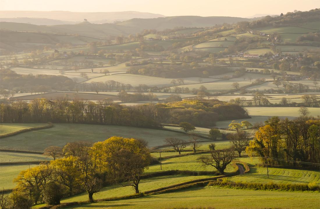 The Marshwood Vale, Dorset by Kerrie Ann Gardner
